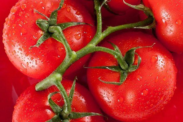 <b>Bulk Tomato Paste</b>