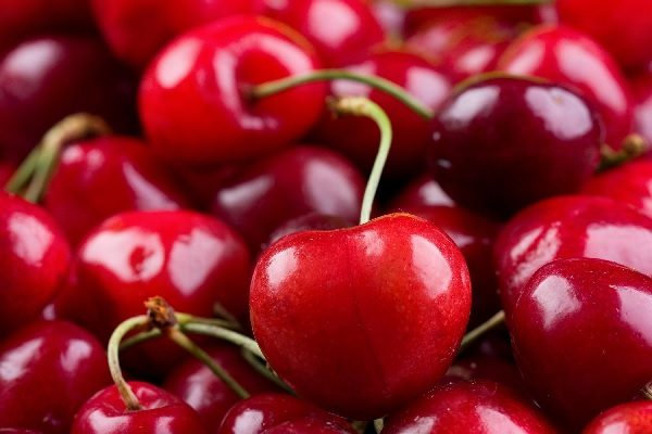 <b>Sour Cherry Juice Concentrate</b>